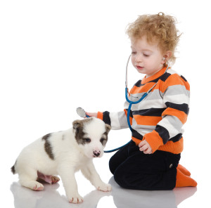 child examining dog and listening with stethoscope