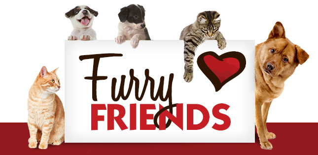FurryFriends_Slider