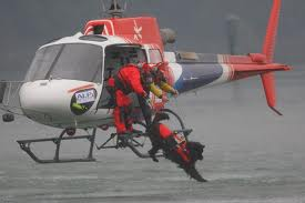 Rescue Dogs Trained to Jump From Helicopter