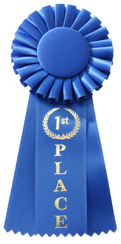 Blue Ribbon Picture klce - what's your blue ribbon ability